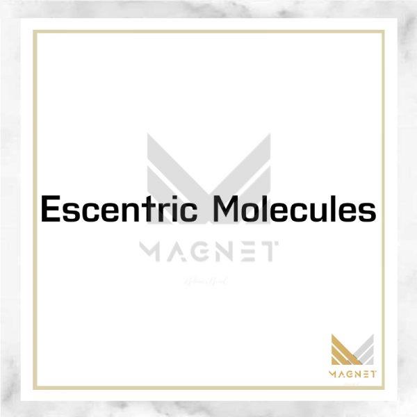 پرفیوم اسنتریک مولکول اسنتریک 02 | Escentric Molecules Escentric 02